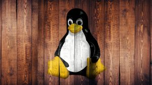 linux webseite