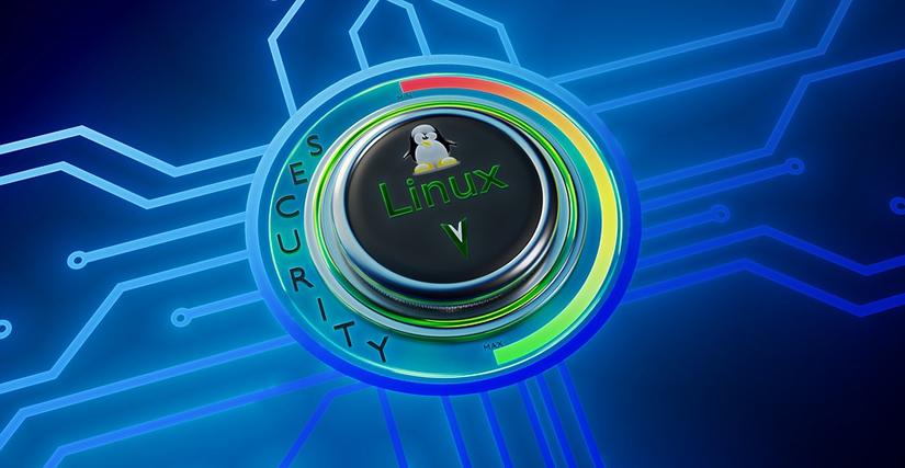 Safe Browsing mit VM und Remote unter Linux