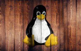 Spezial-Linux unter Windows